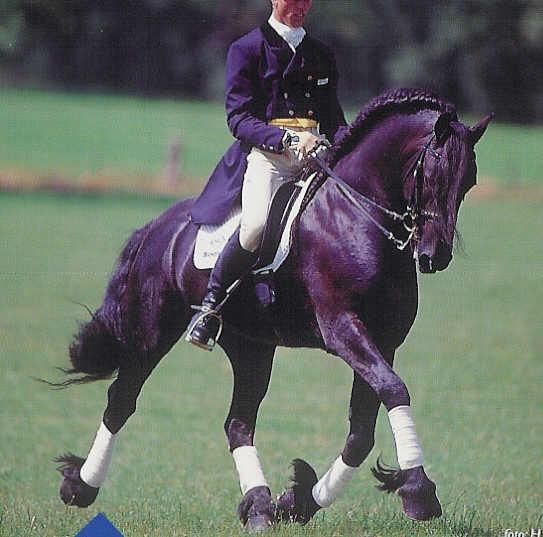 2 stallions for a hot euro slut - 3 4